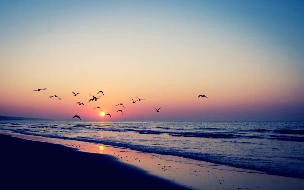云彩壮阔大海小船日出早晨朝霞海上日出火烧云绚丽绚丽壮阔的海上日出图片绚丽壮阔的海上日出图片免费下载云彩图片壮阔图片大海图片小船图片日出图片早晨图片朝霞图片海上日出图片火烧云图片绚丽图片